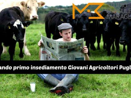 Bando primo insediamento Giovani Agricoltori Puglia
