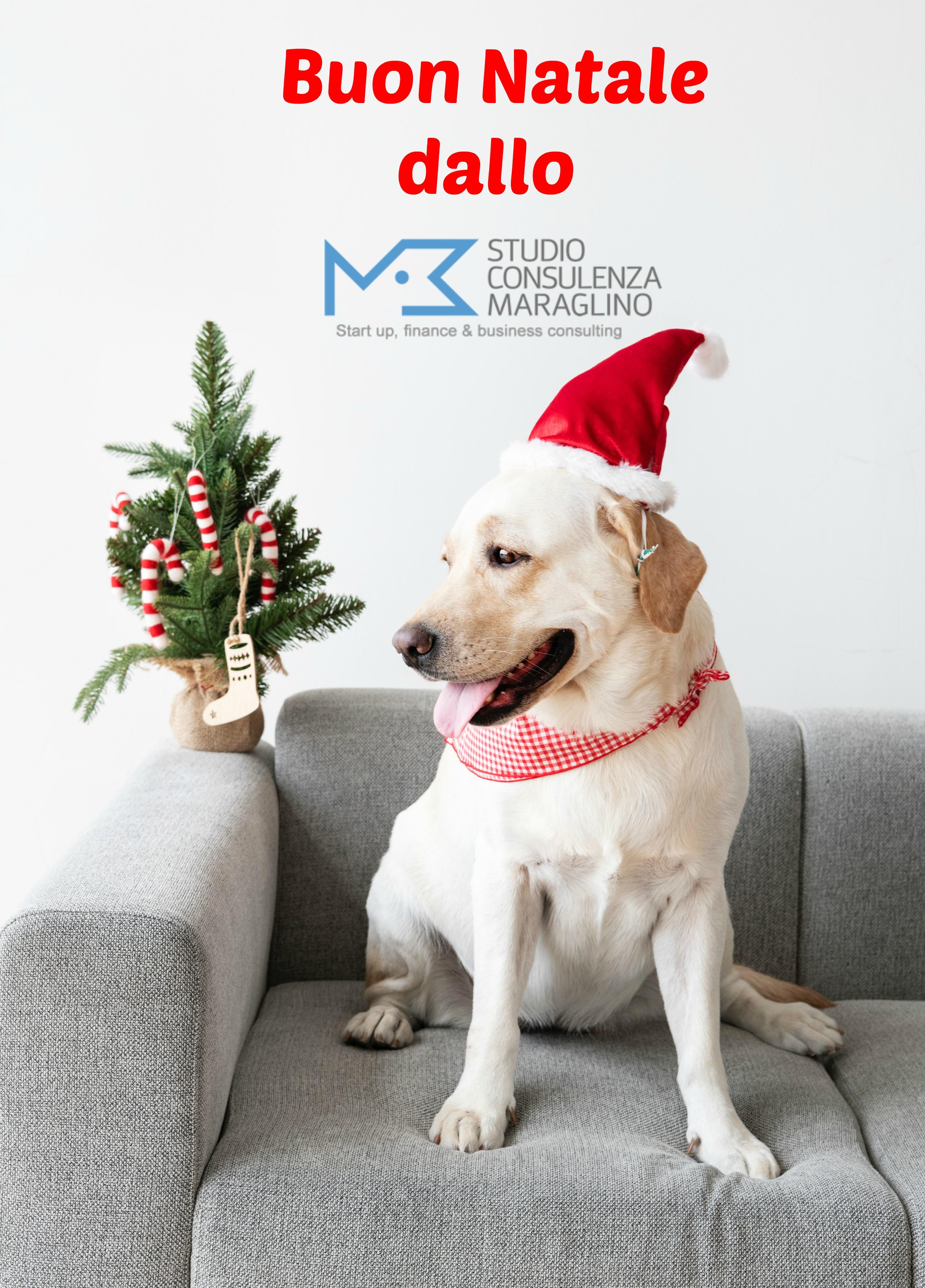 Buon Natale e Buon 2019
