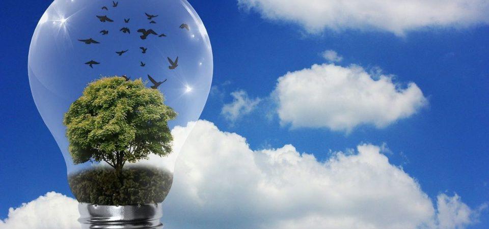 Maxi sconto decreto ambiente per le imprese: fino al 20% sull'acquisto dei prodotti